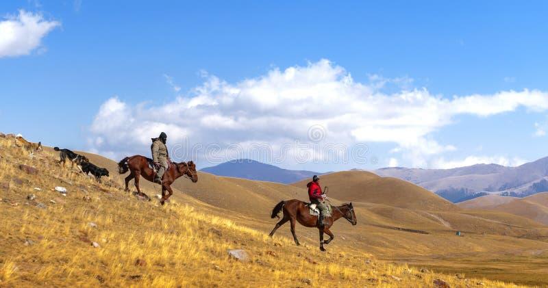 Jinetes del caballo en la estepa imágenes de archivo libres de regalías