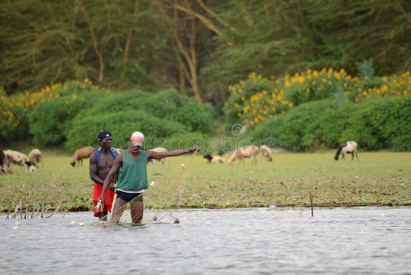 JINJA UGANDA - CIRCA OKTOBER, 2017: Dagligt liv i Jinja Ungdomargör deras dagligt livjobb på flodstranden Nilen, Jin royaltyfri bild