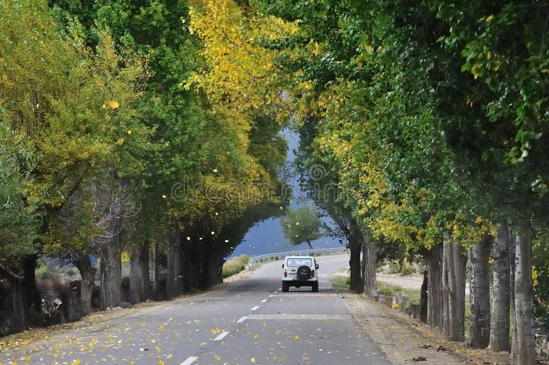 Jipe na estrada do outono foto de stock royalty free