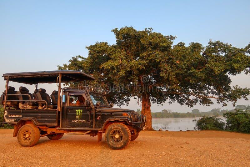 Jipe na frente de uma árvore grande Parque nacional de Udawalawe, Sri Lanka fotografia de stock royalty free