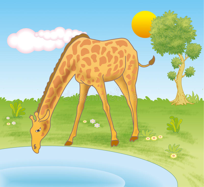 Jirafa que bebe de una piscina ilustración del vector