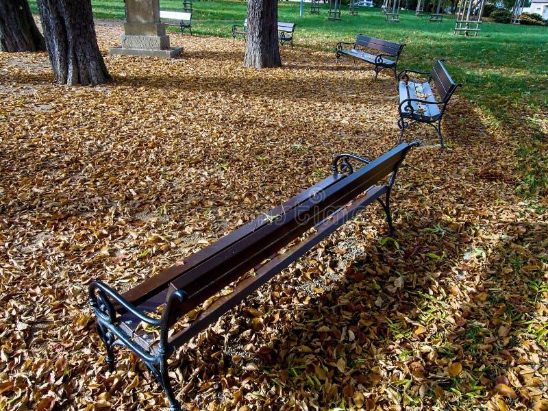 Jirkov, Tschechische Republik - 22. Oktober 2019: Holzbänke im Svojsikovy sady Park im Zentrum der Herbststadt lizenzfreies stockbild