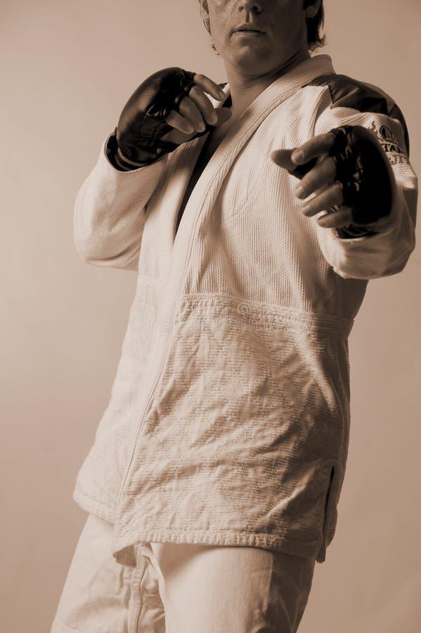 Jiu-Jitsu brasileño fotos de archivo