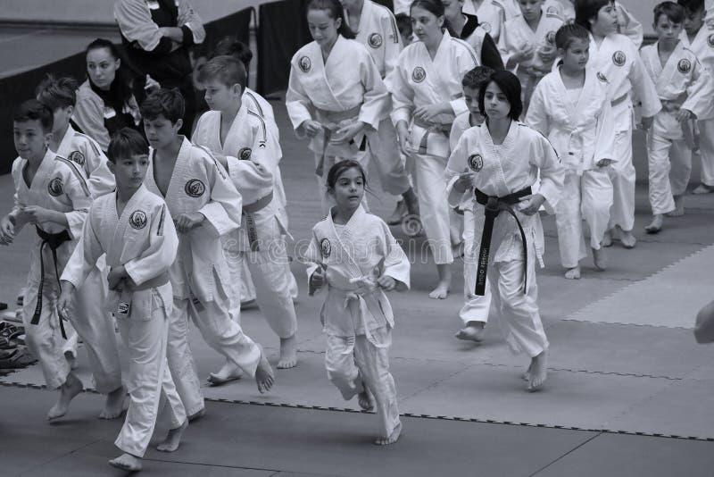 Jiu Jitsu junior fighting at Romanian Championship, Juniors, May 2018. Jiu Jitsu students in Kimono on tatami. Jiu-Jitsu Romanian Championship took place in royalty free stock images