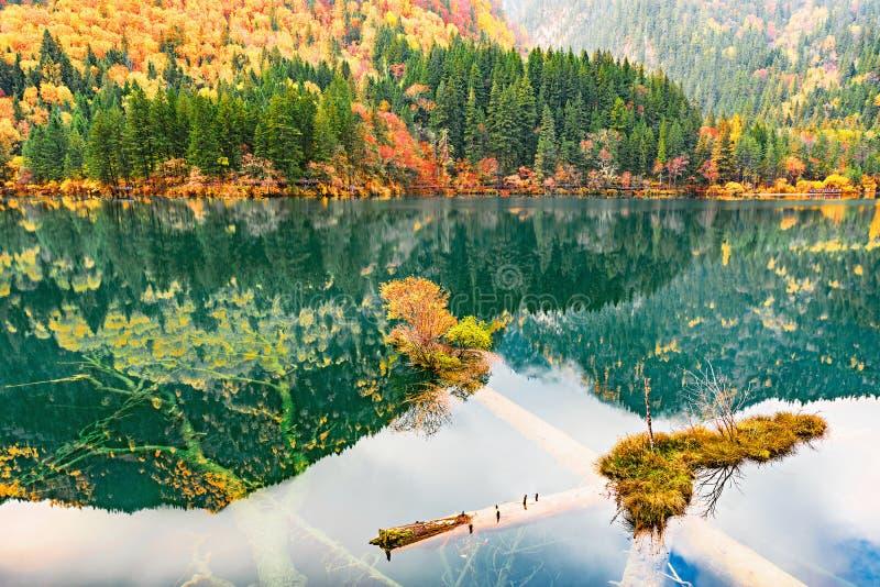 Jiuzhai Dolinny park narodowy, Chiny zdjęcie royalty free