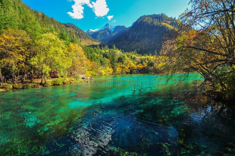 Jiuzhaigou湖 免版税库存图片