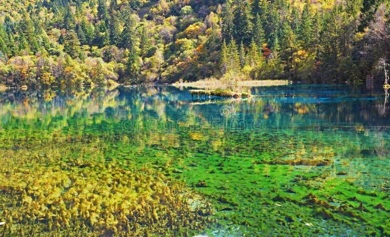 Jiuzhaigou immagini stock