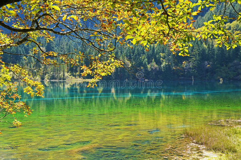 Jiuzhaigou immagine stock