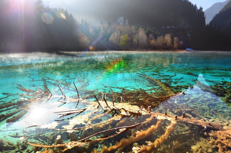 The Jiuzhaigou clear lake royalty free stock photo