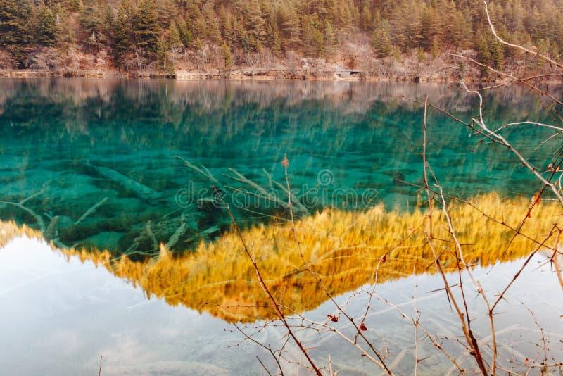 Jiuzhaigou Dolinny park narodowy Chiny obraz royalty free