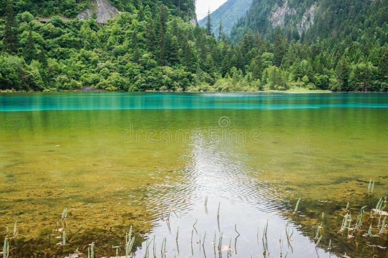 Jiuzhaigou Dolinny park narodowy i Historyczny interesu teren zdjęcie royalty free