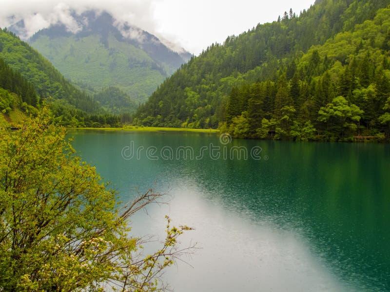 Jiuzhaigou Dolinny park narodowy w Chiny obraz stock