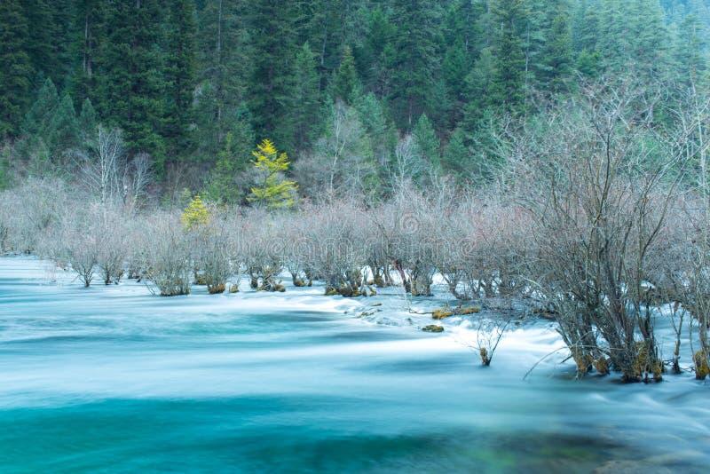 Jiuzhaigou dos rios fotografia de stock