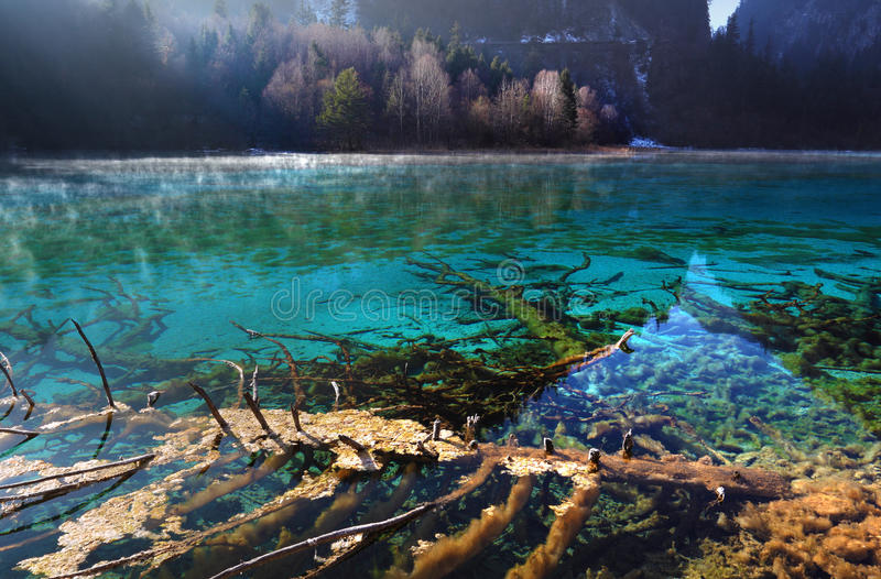 The Jiuzhaigou morning beautiful scenery stock photo