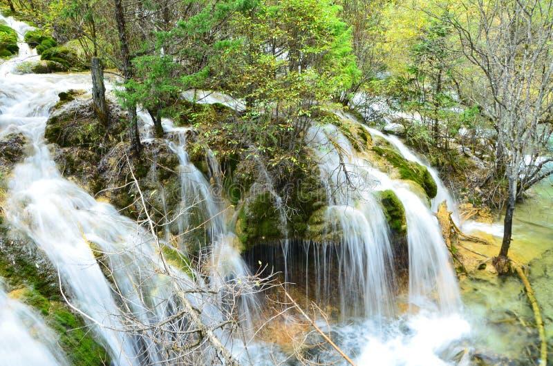 Jiuzhaigou Nationaal die Park in het noorden van de Provincie van Sichuan in het zuidwestelijke gebied van China wordt gevestigd stock afbeeldingen