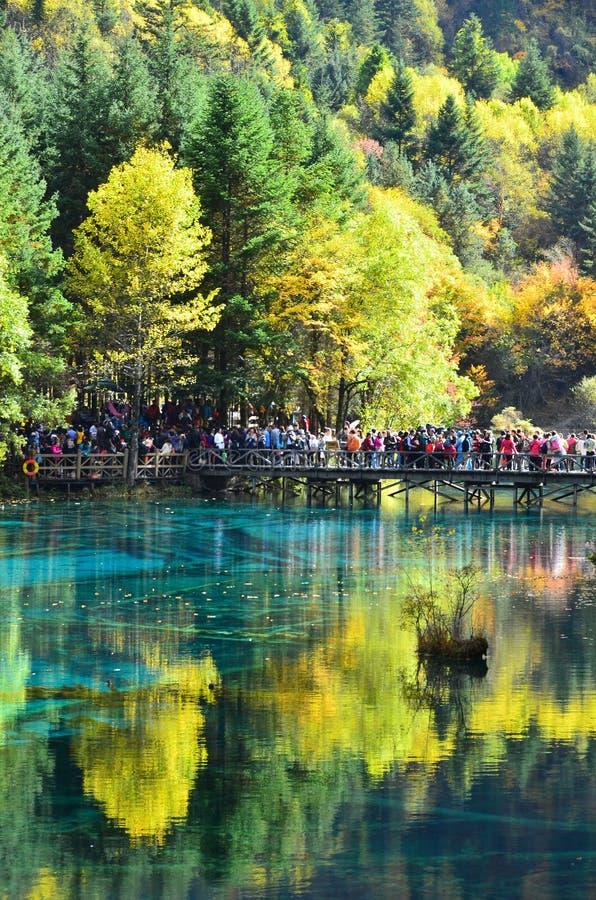 Jiuzhaigou Nationaal die Park in het noorden van de Provincie van Sichuan in het zuidwestelijke gebied van China wordt gevestigd stock foto's