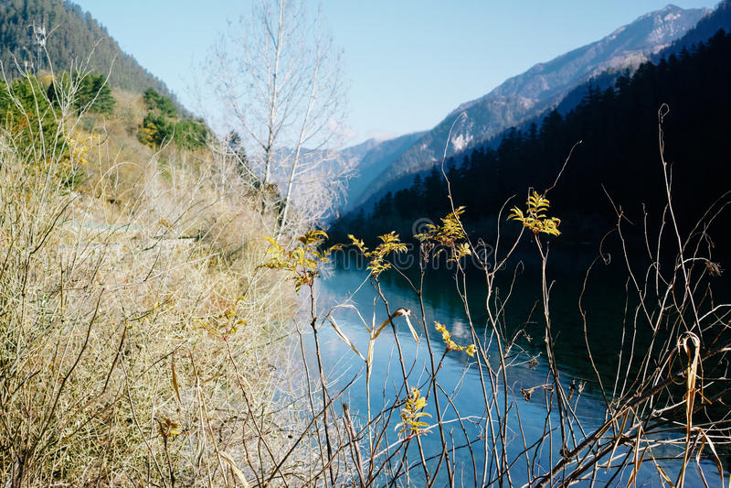 Jiuzhaigou Nationalpark stockfotografie