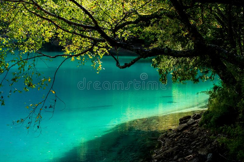 Lake and Trees in Jiuzhaigou Valley, Sichuan, China. Jiuzhaigou is one of the best natural sight in the would, due to its water, mountain, trees. it is located stock photography