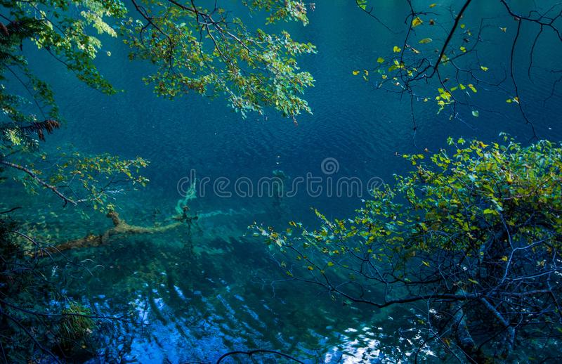 Lake in Jiuzhaigou Valley, Sichuan, China. Jiuzhaigou is one of the best natural sight in the would, due to its water, mountain, trees. it is located in Sichuan royalty free stock image
