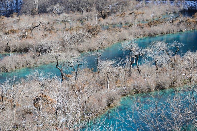 Jiuzhaigou Shuzheng lakes in winter royalty free stock photography