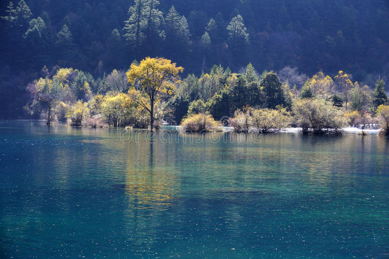 Download Jiuzhaigou Sparkling lake stock photo. Image of colors - 27544842