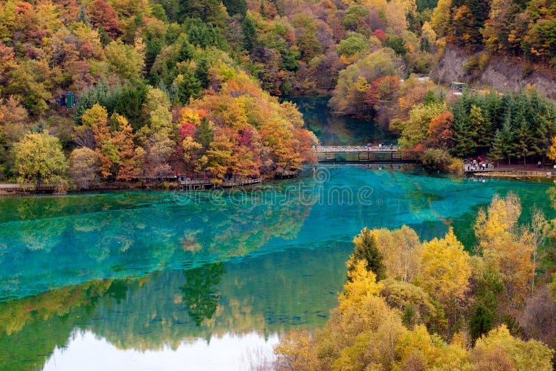 jiuzhaigounational för porslin 20 ingen sicuan park arkivfoton