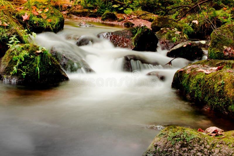 Jizerskeberg, Kamenice-rivier, Tsjechische Republiek stock afbeeldingen