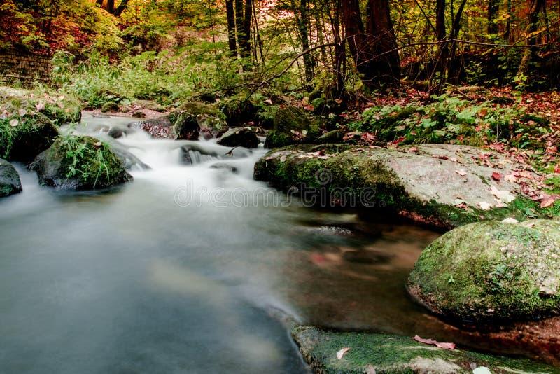 Jizerskeberg, Kamenice-rivier, Tsjechische Republiek stock fotografie