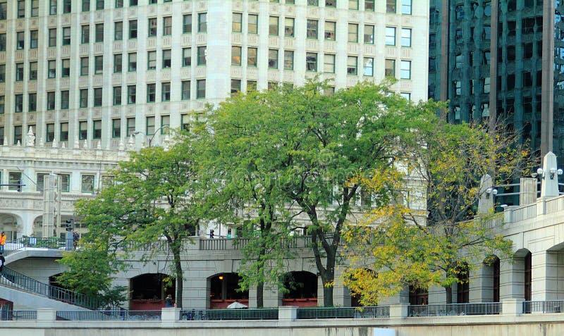 Jn invallningen i Chicago, IL royaltyfri bild