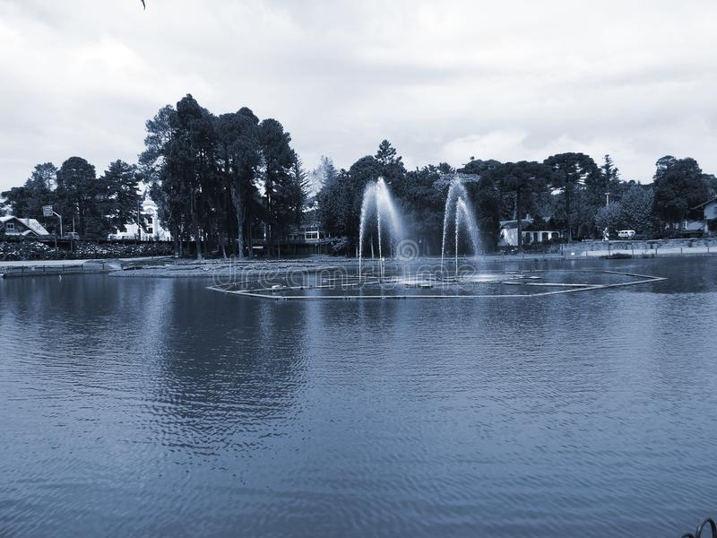 Joaquina Rita Bier Lake II imagens de stock
