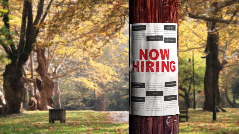 Job seeking concept. Newspaper page on the tree royalty free stock images