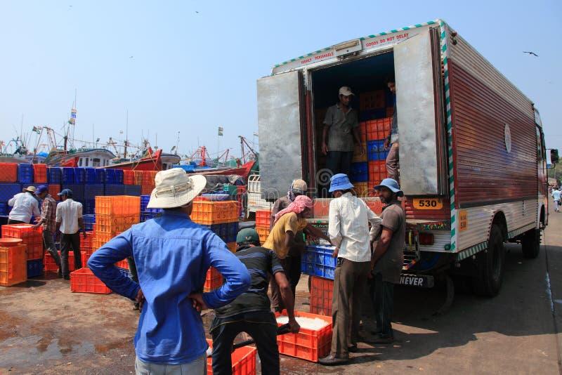 Jobbare laddar spjällådorna fyllde med fisken till lastbilen arkivbild
