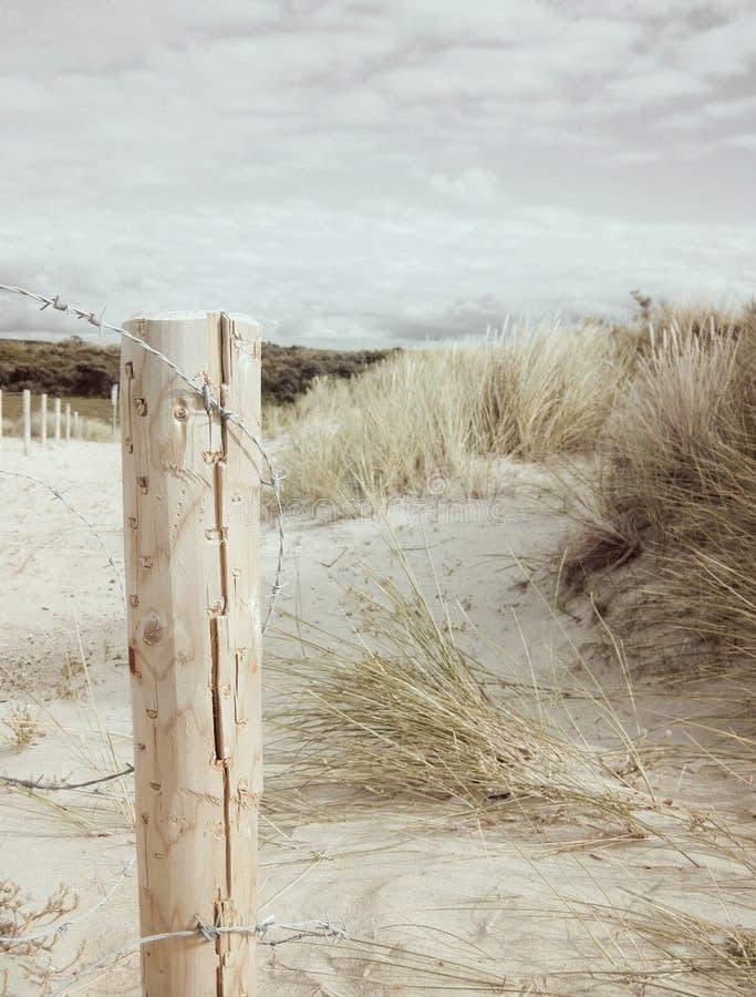Jobstepps im Sand, der zum Horizont ausdehnt stockfotografie
