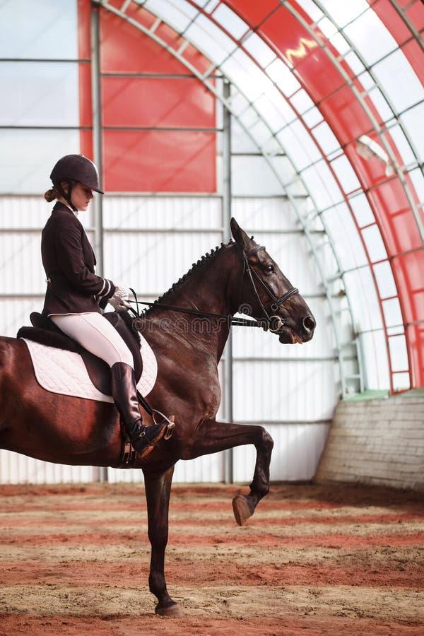 Jockey οδηγά το άλογο στο χώρο στοκ εικόνες