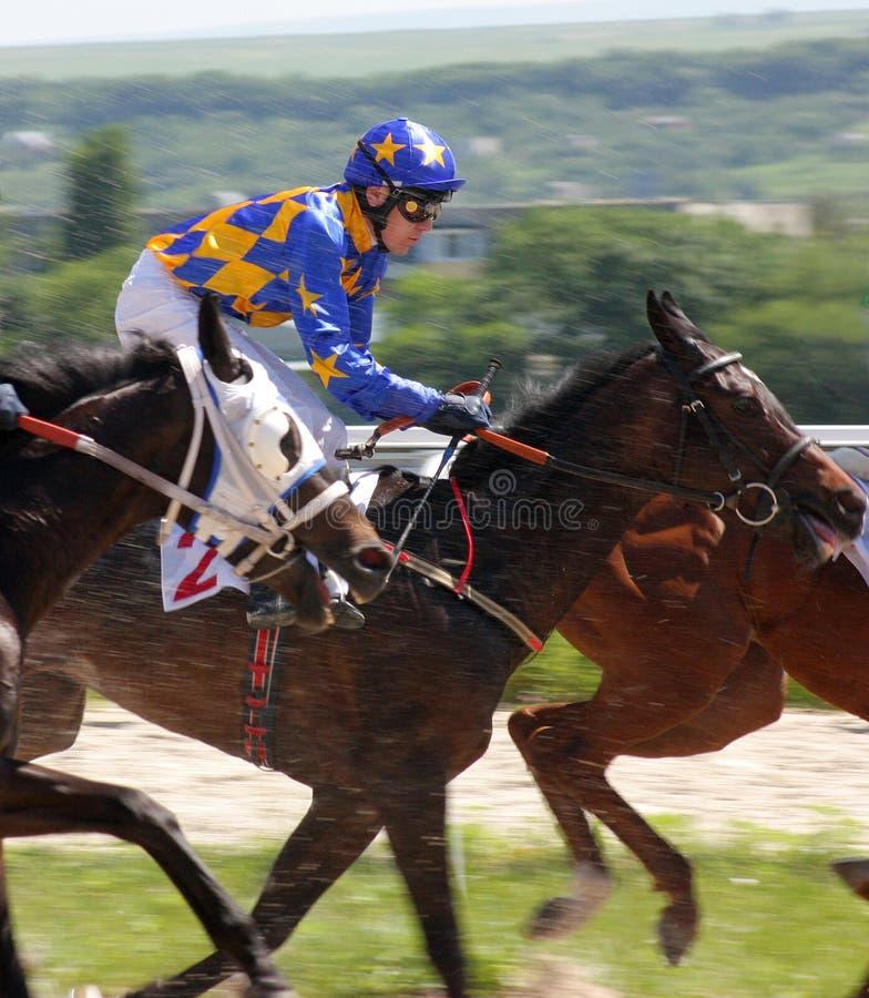 Jockey stockbilder