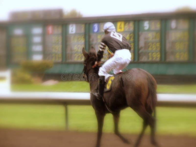 Jockey royalty-vrije stock foto's