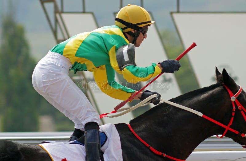 jockey fotografia de stock