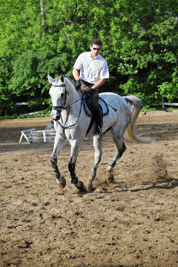 Jockey in den Gläsern, die weißes Pferd reiten stockfotos