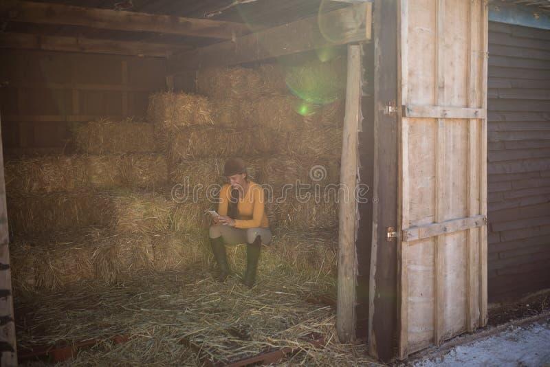 Jockey, der Telefon in Stall gesehenem durch Eingang verwendet stockbild