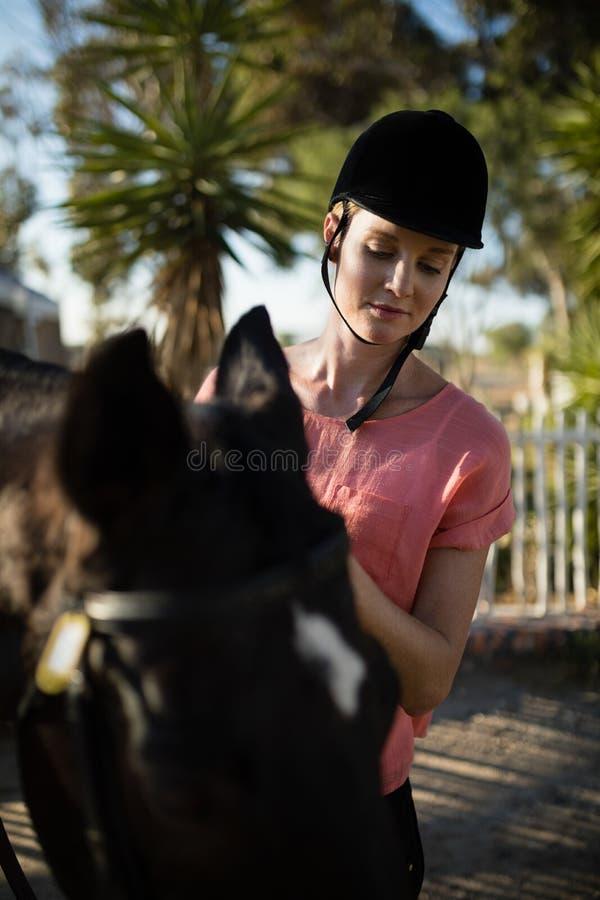 Jockey féminin regardant vers le bas tout en se tenant prêt le cheval photos libres de droits