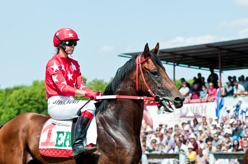 Download Jockey On Horse Before The Start Editorial Image - Image: 22064135