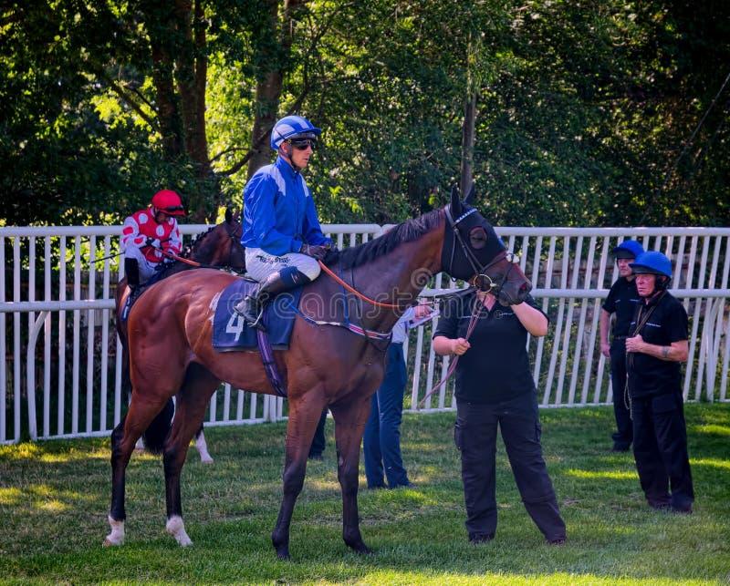 Jockey Jim Crowley auf Mutaraffa Lingfield-Park stockfotografie
