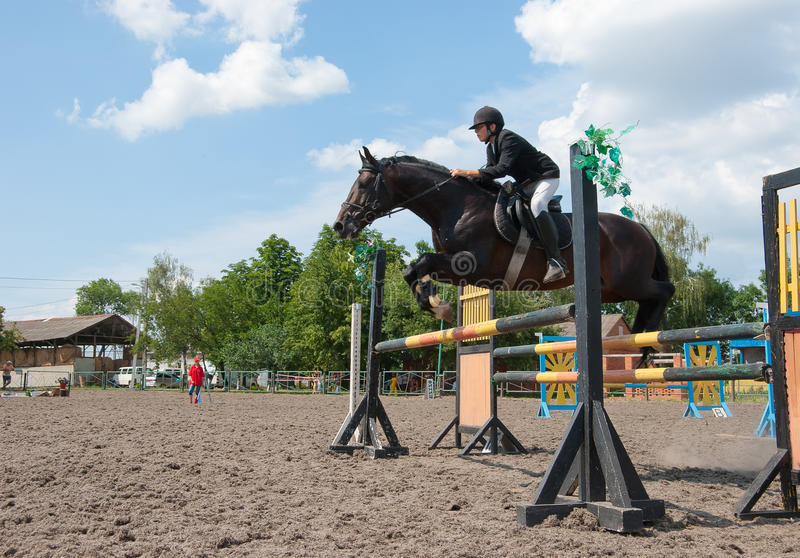 Download Jockey jumps over a hurdle stock photo. Image of animal - 16457054