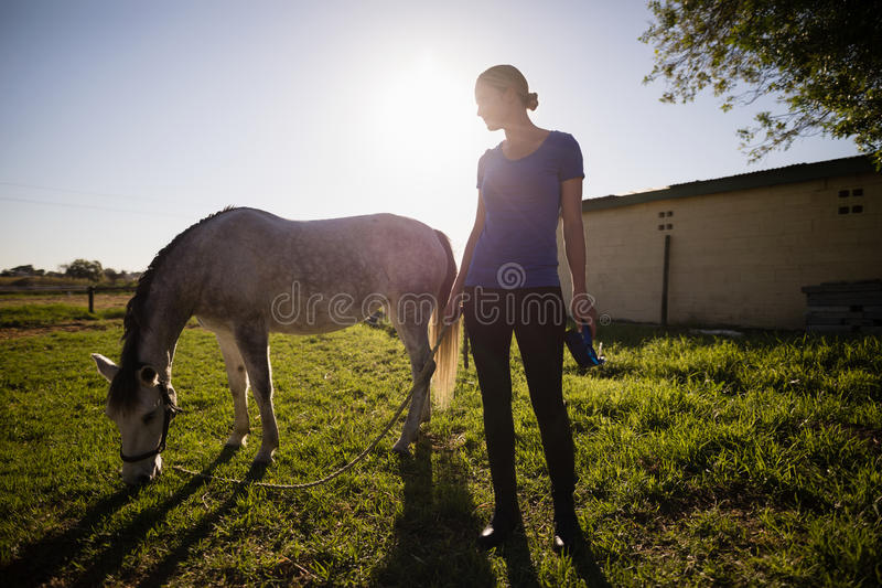 Jockey looking at horse while standing on field. Female jockey looking at horse while standing on grassy field royalty free stock photography