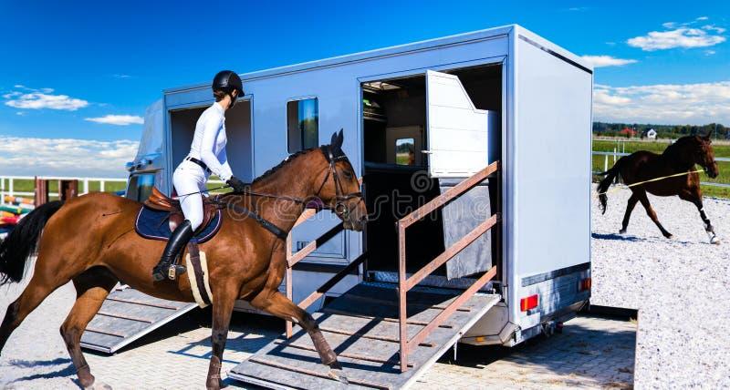 The jockey operates a horse stock photos