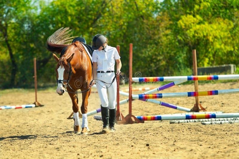 Jockey with purebred horse. Image of female jockey with purebred horse outdoors stock photo