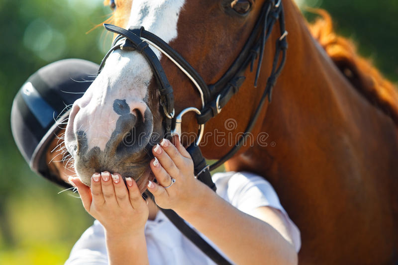 Jockey with purebred horse. Portrait of female jockey feeding purebred horse royalty free stock photo