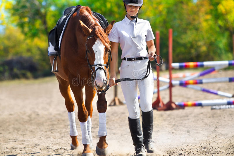 Jockey With Purebred Horse Stock Photography