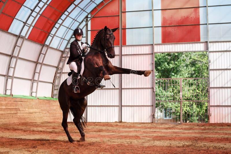 Jockey reitet Pferd in der Arena lizenzfreie stockbilder