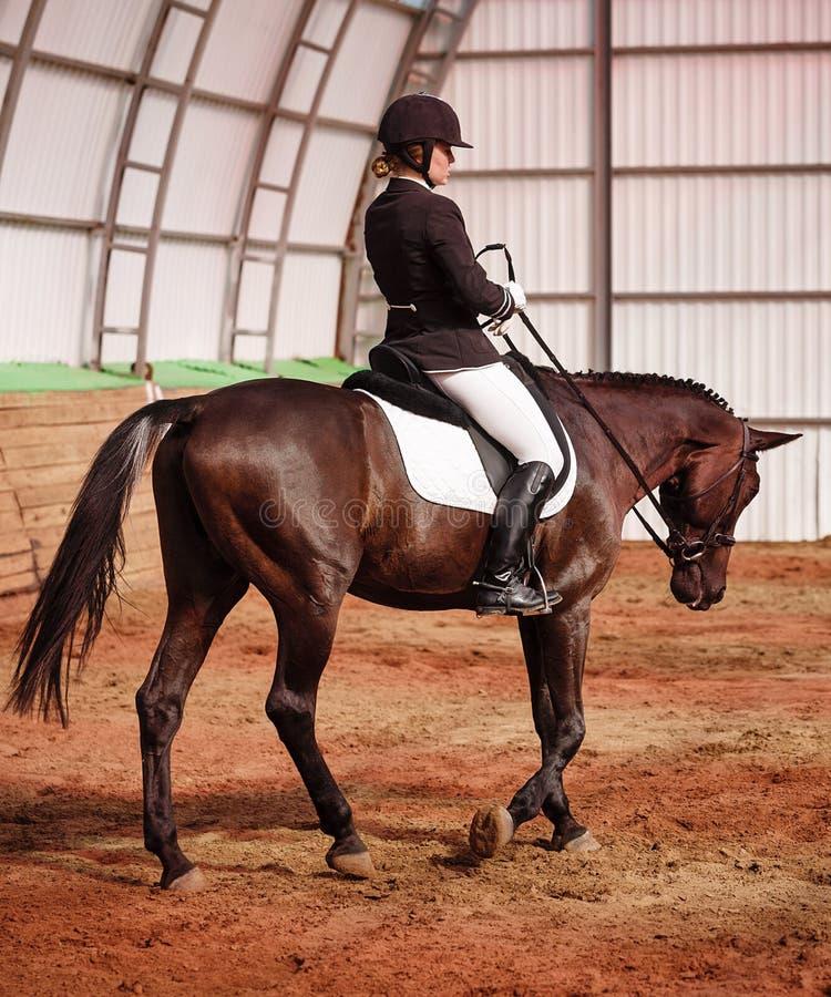 Jockey reitet Pferd in der Arena lizenzfreie stockfotos